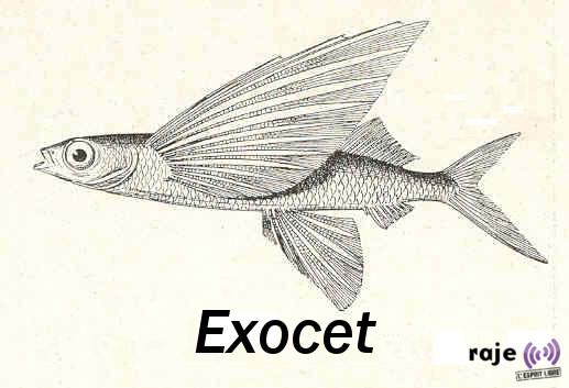 Manuscrit de Voynich/Roger Bacon